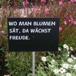 01maba_laga_zuelpich20140924
