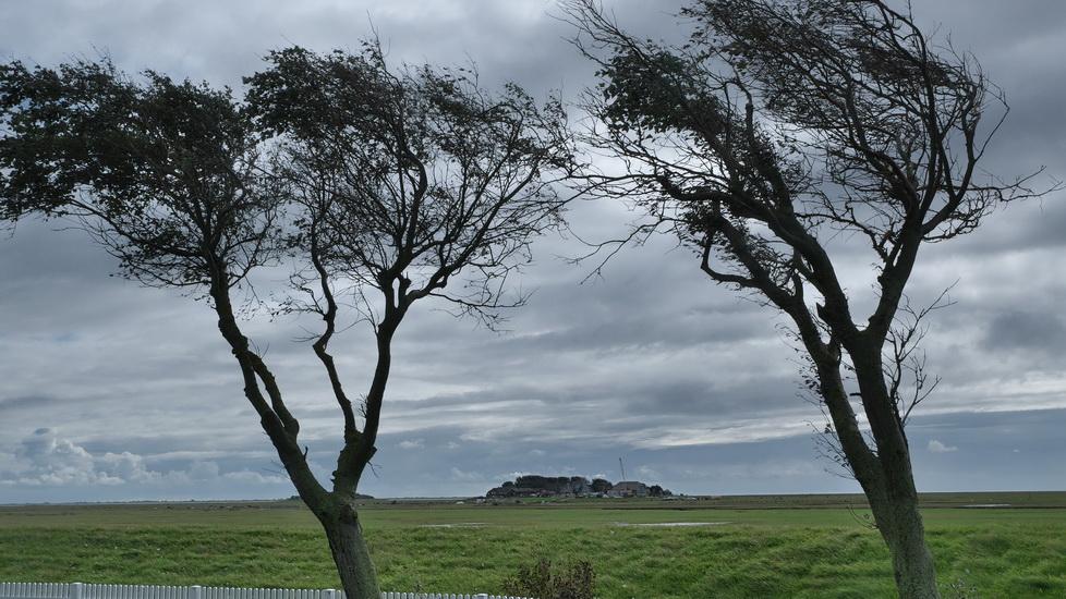 Bilder von der Nordfrieslandfahrt